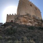 Ribera 11