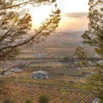 Valley of wineries in Laguardia, Spain.